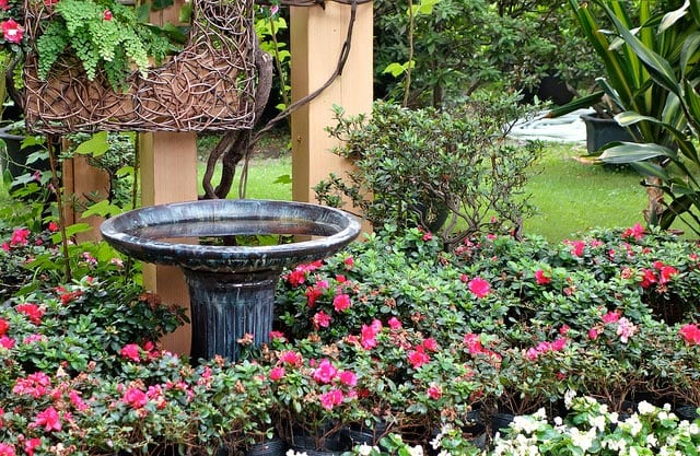Spring Landscaping Tips 7 landscaping tips to prep your property for spring - rentappeal